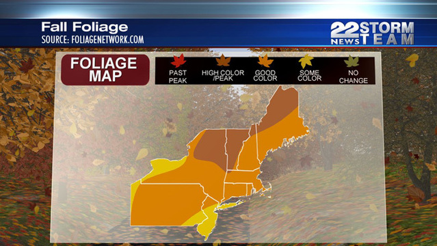 When will we see some fall colors in the leaves WWLP