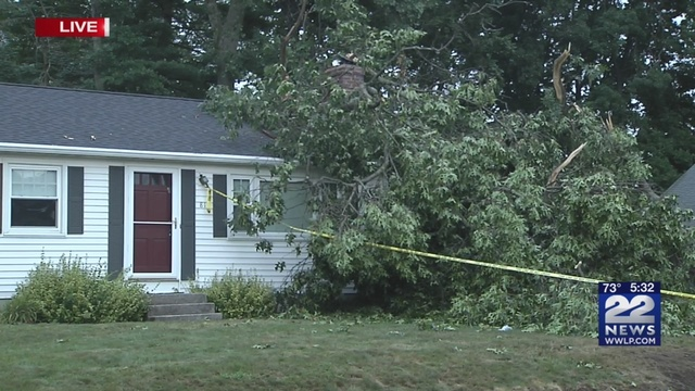 one dead after tree falls on pineview circle home in agawam